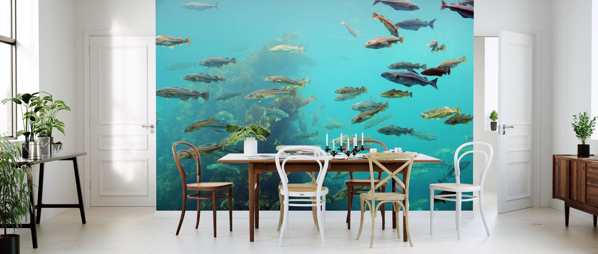 Circling Fish - Wallpaper - Kitchen