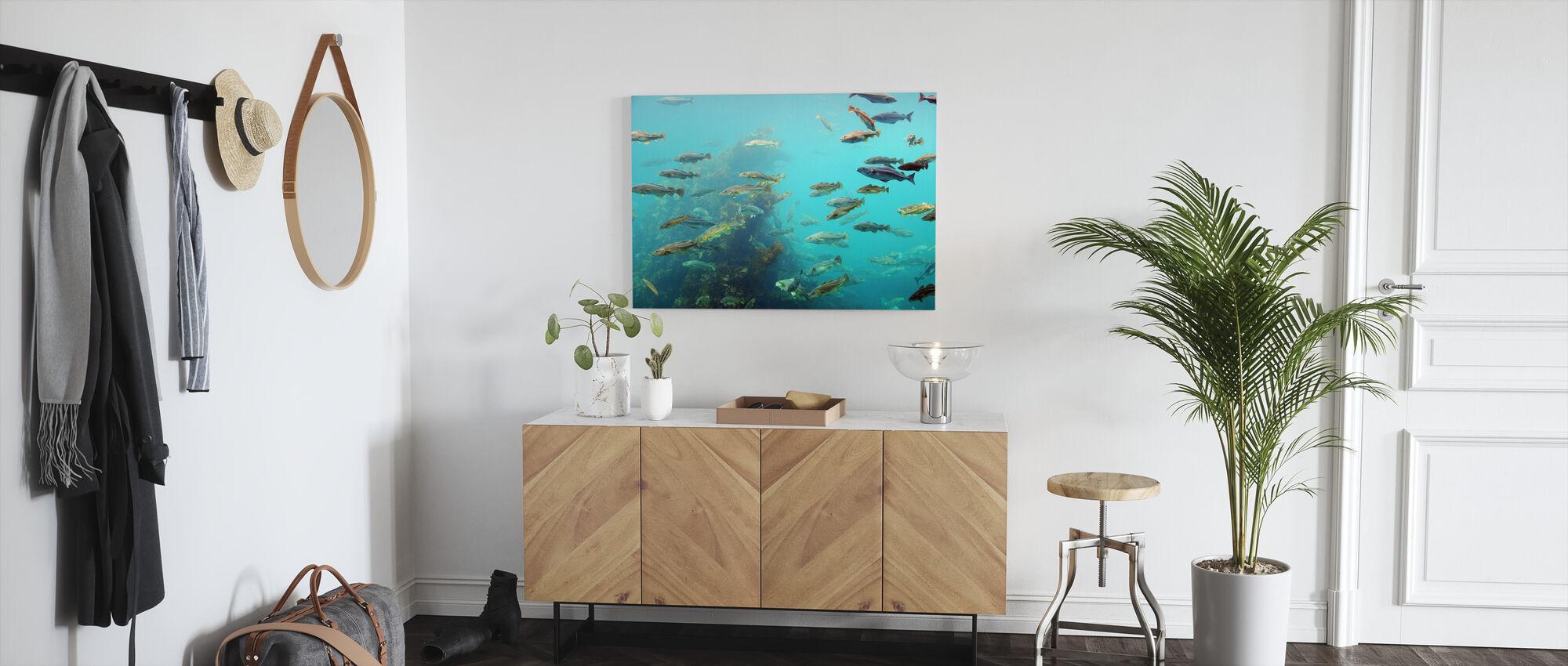 Sirkle fisk - Lerretsbilde - Gang