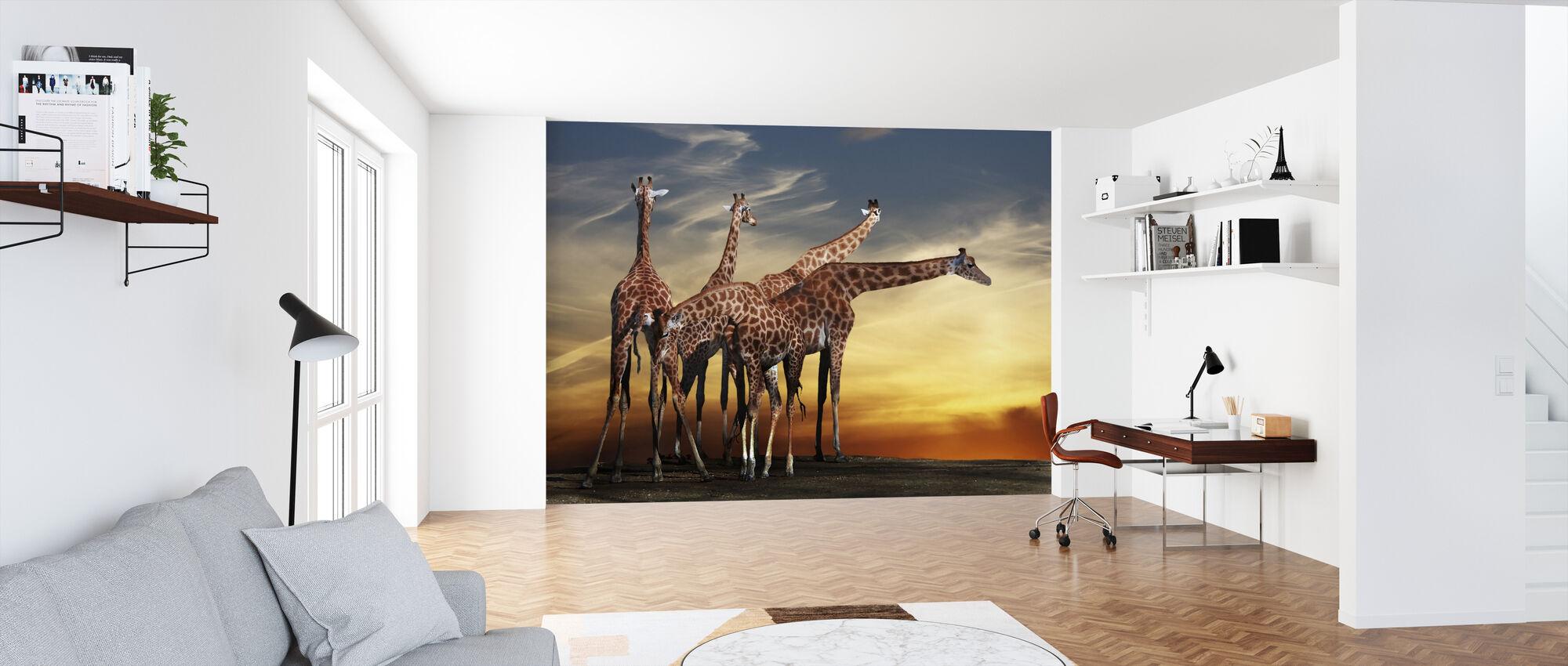 Giraffer och utsikt - Tapet - Kontor