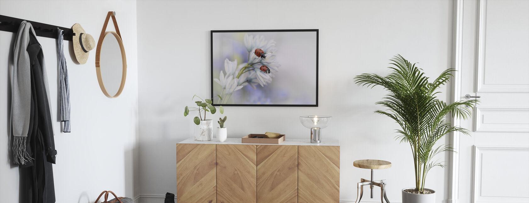 Marihøner På Hvit Blomst - Innrammet bilde - Gang