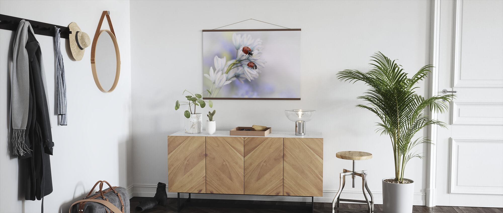 Mariehøns på hvid blomst - Plakat - Entré