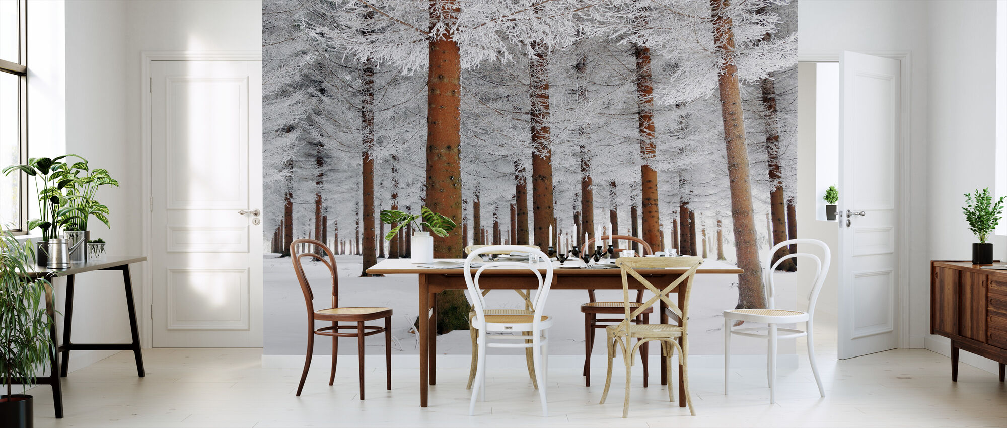 White Forest - Wallpaper - Kitchen