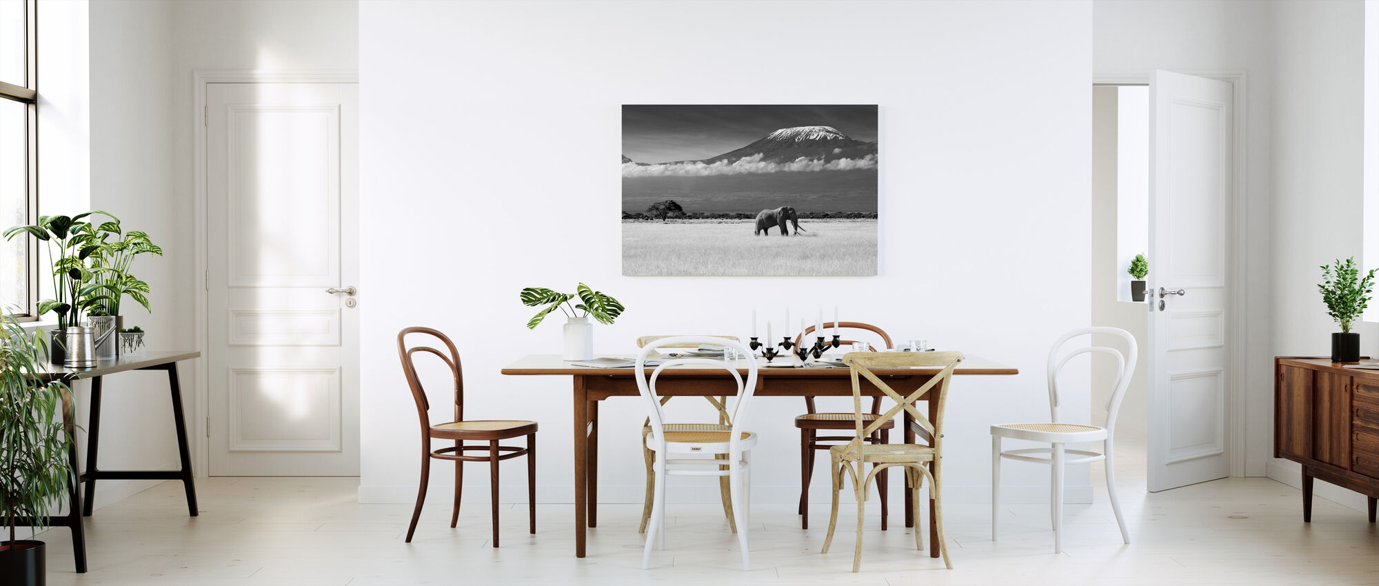 Elephant Landscape - Canvas print - Kitchen