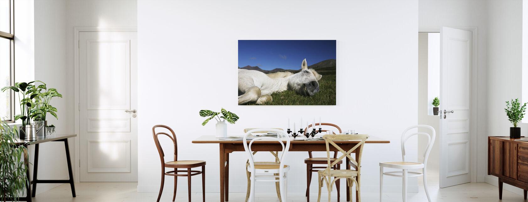 Häst sover - Canvastavla - Kök