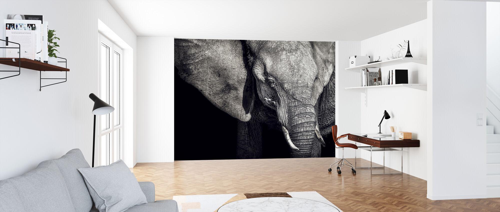 Beautiful Elephant - Wallpaper - Office