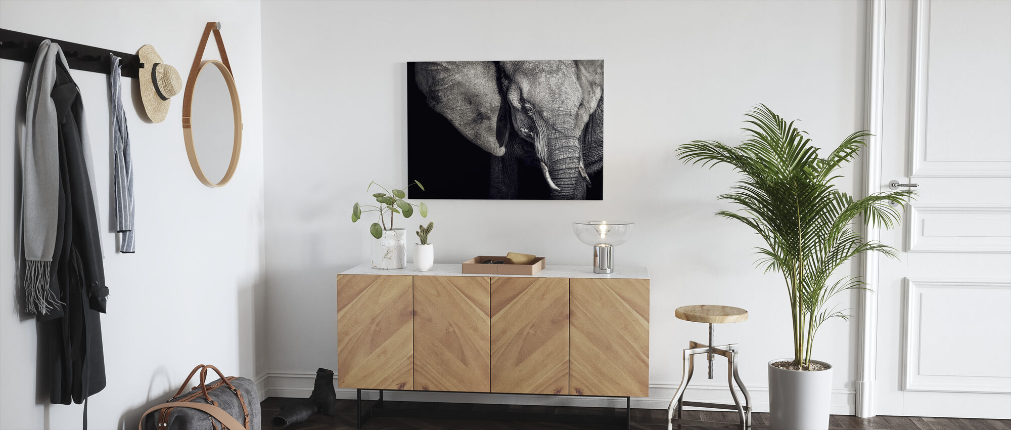 Beautiful Elephant - Canvas print - Hallway