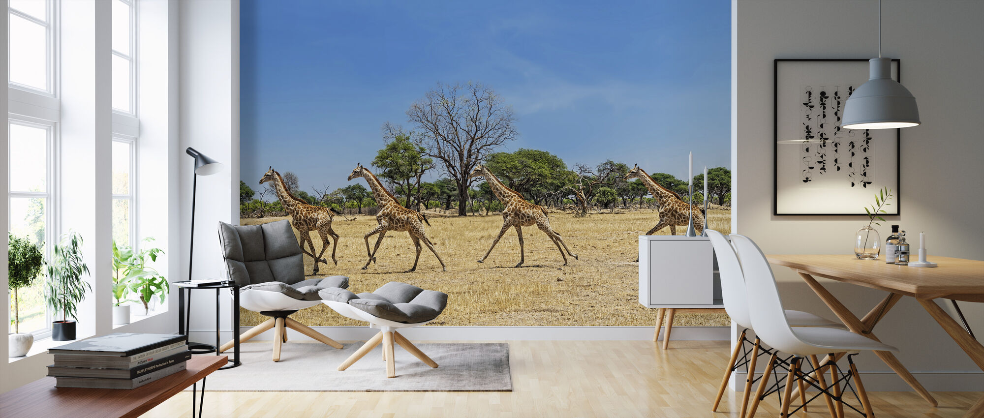 Giraffe Promenade - Wallpaper - Living Room