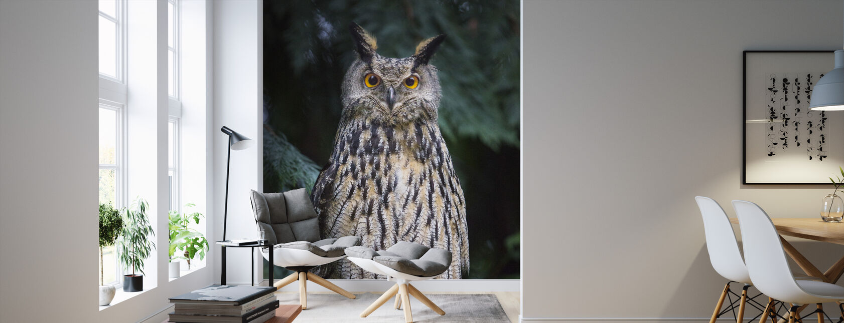 Owl - Wallpaper - Living Room