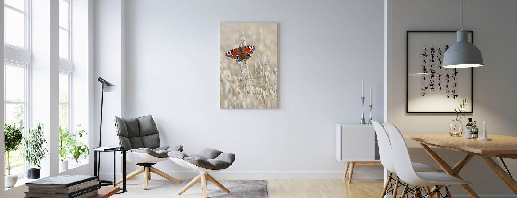 Peacock Butterfly on Oats - Canvas print - Living Room