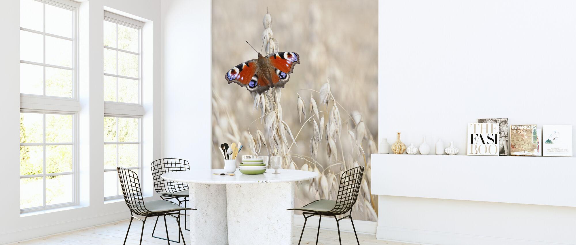 Peacock Butterfly on Oats - Wallpaper - Kitchen