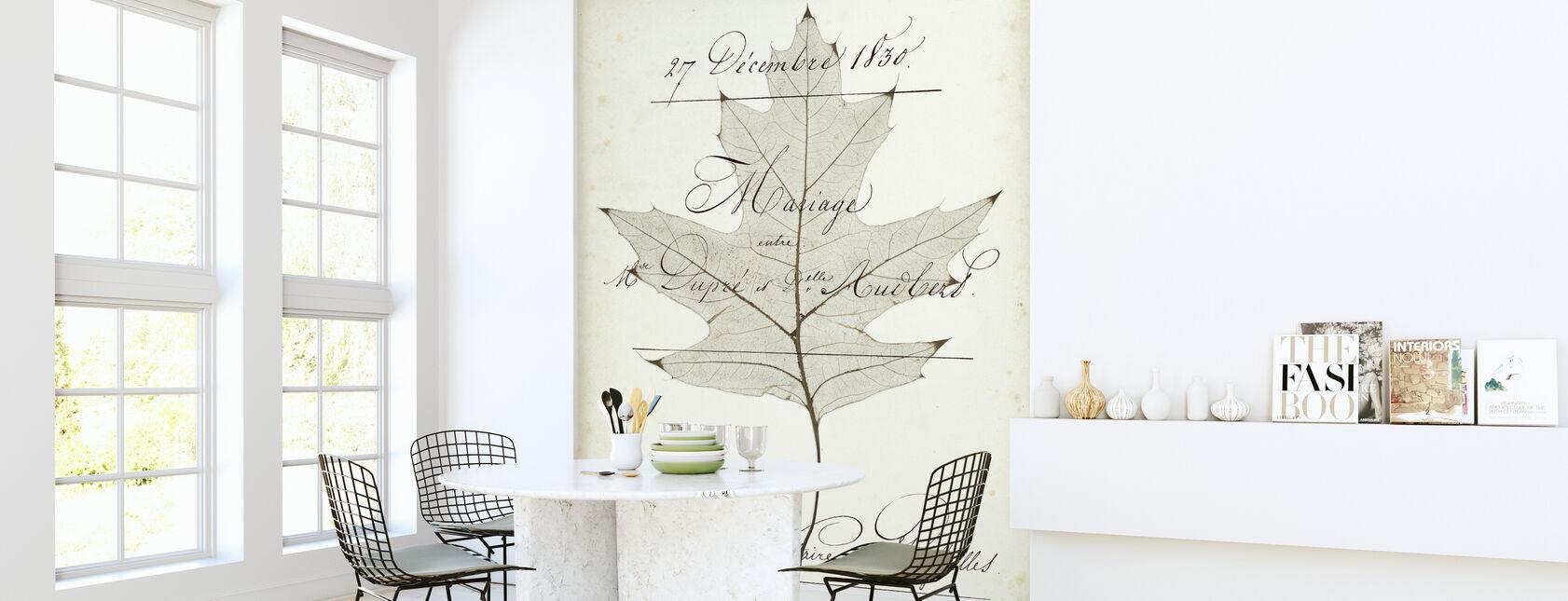 Birch Document - Wallpaper - Kitchen