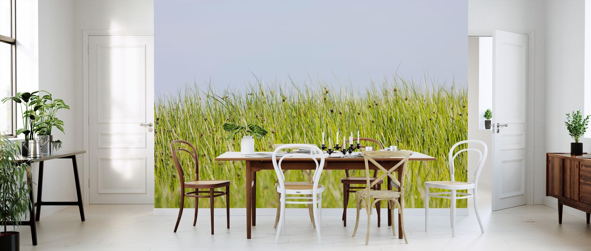 Grön sommar äng - Tapet - Kök