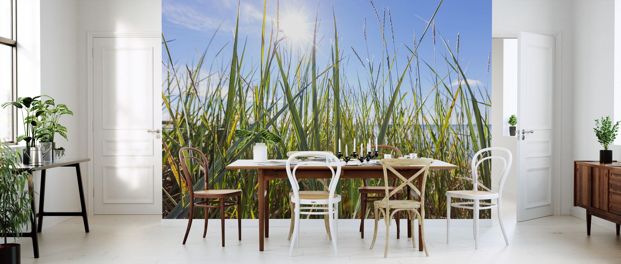 Sonnenschein und Gras - Tapete - Küchen