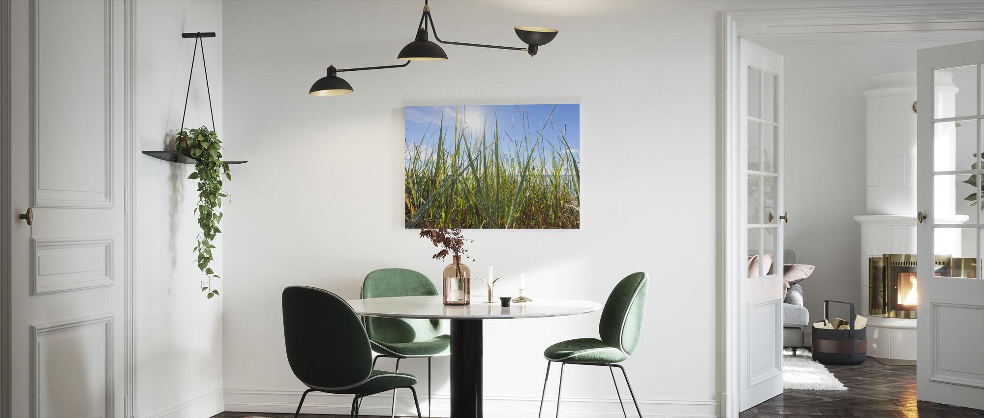 Solskin og græs - Billede på lærred - Køkken