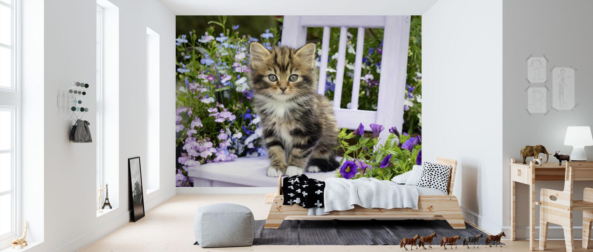 Utendørs kattunge - Tapet - Barnerom