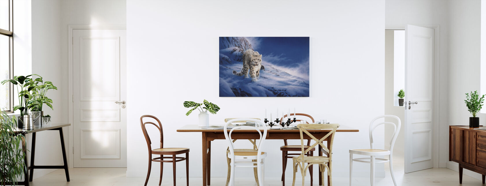 Snow Leopard - Canvas print - Kitchen