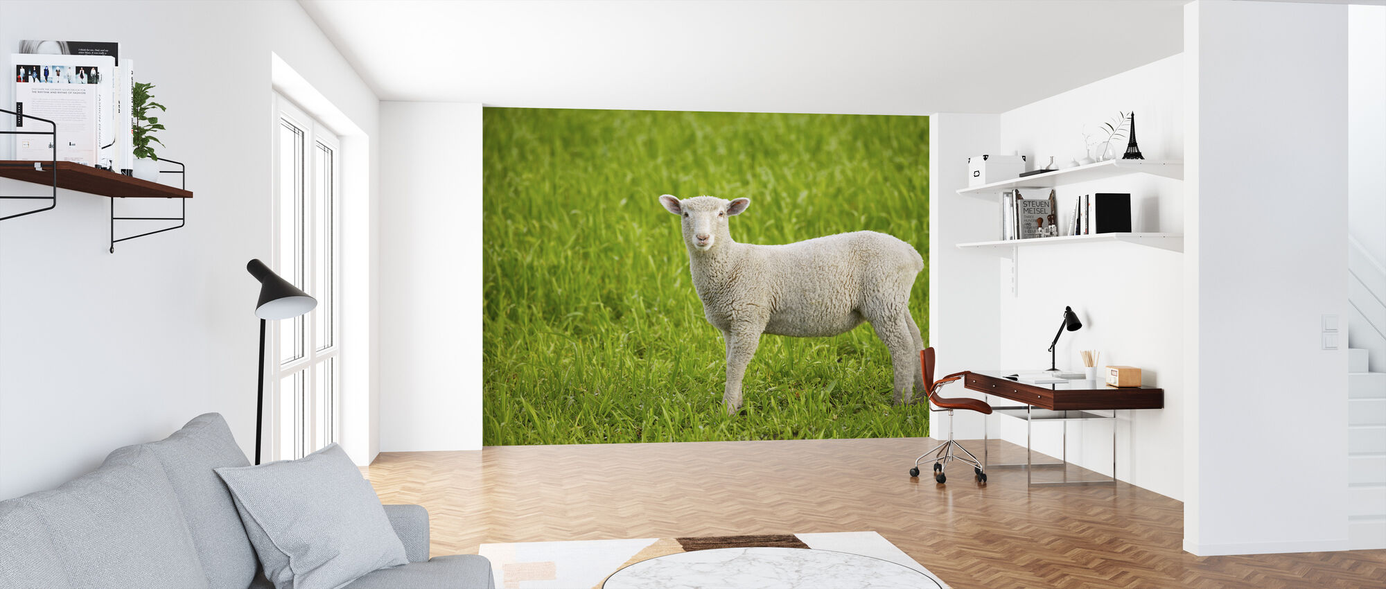 Lamb on Green Grass - Wallpaper - Office