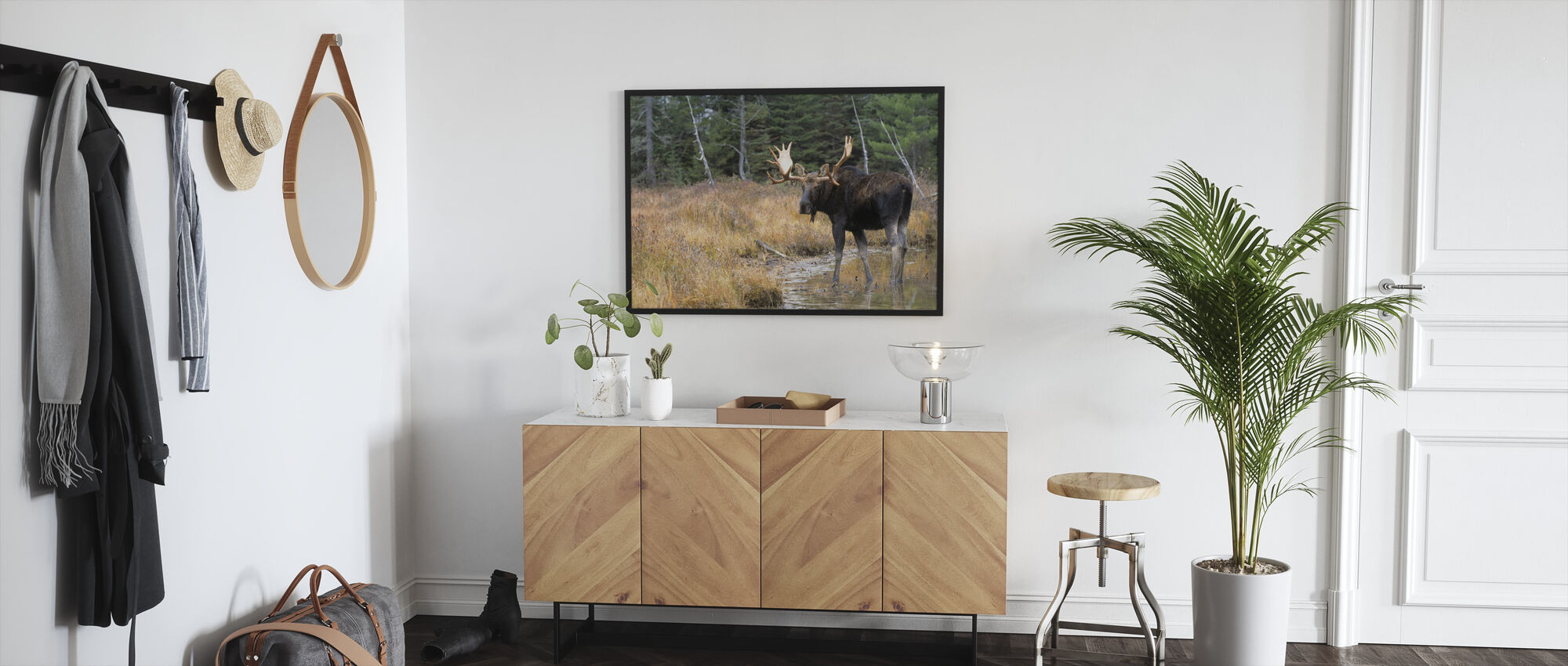 Moose in Woods - Framed print - Hallway