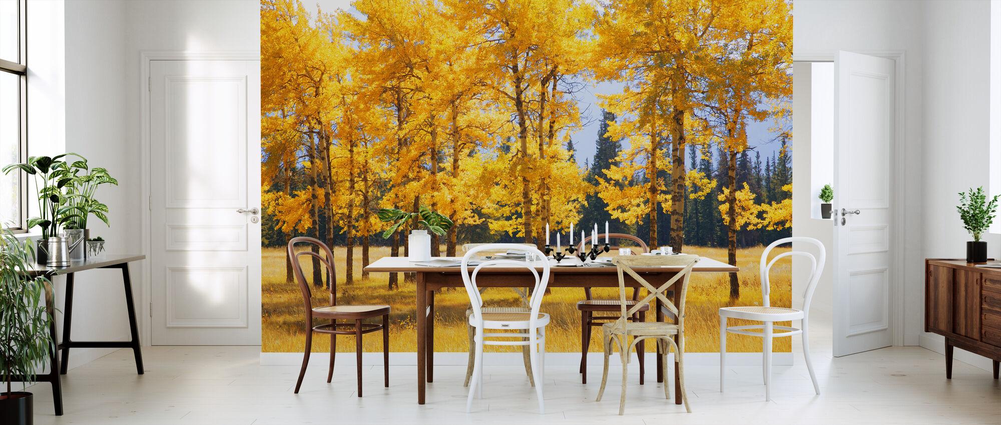 Yellow Autumn Trees - Wallpaper - Kitchen
