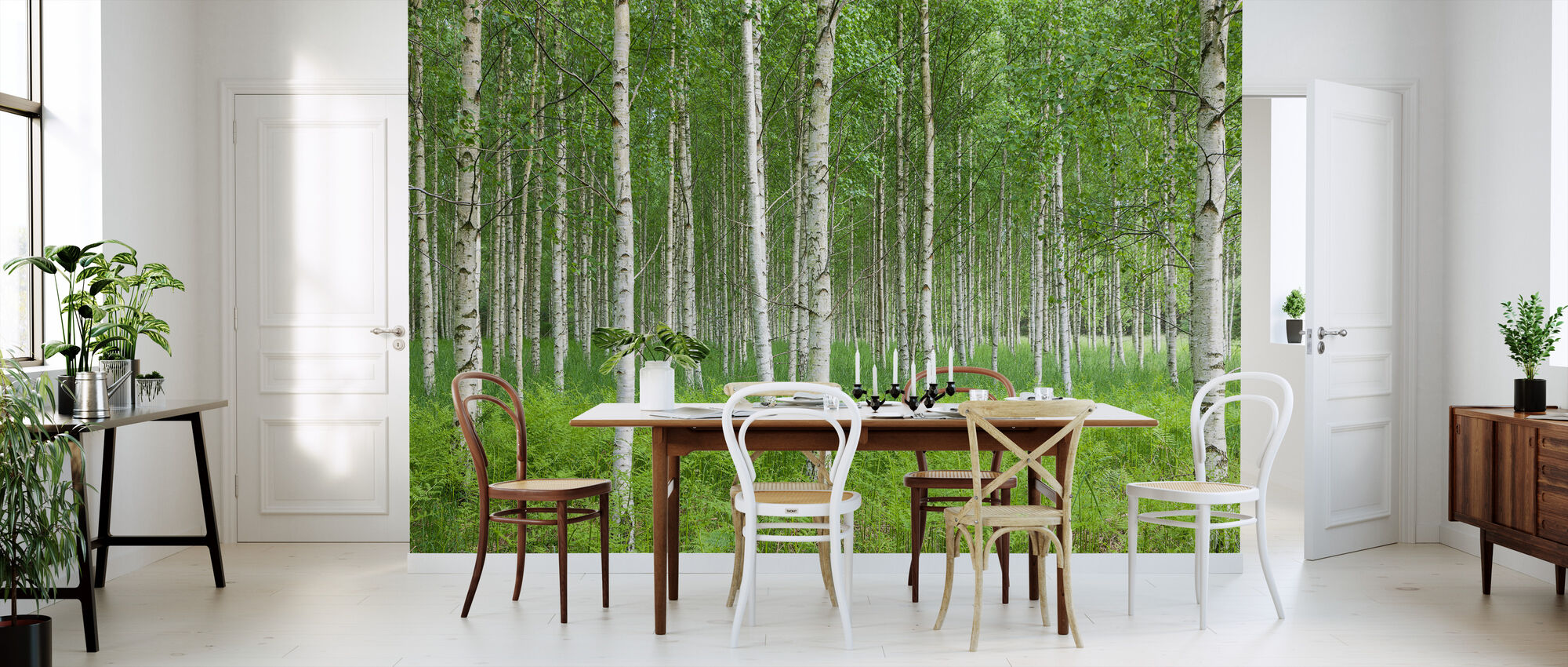 Summer Birch Forest - Wallpaper - Kitchen