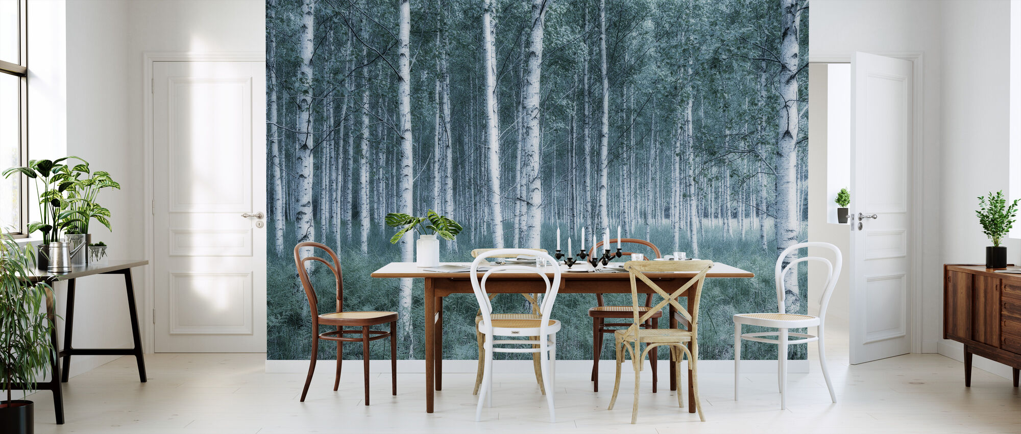 Mystic Birch Forest - Wallpaper - Kitchen