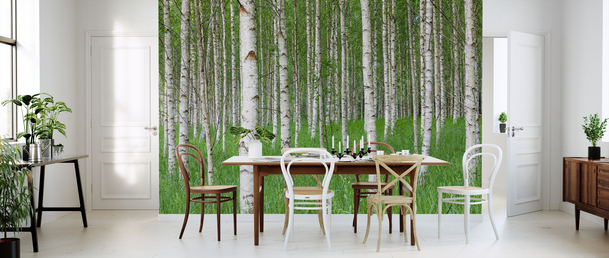 Birch Forest & Green Grass - Wallpaper - Kitchen