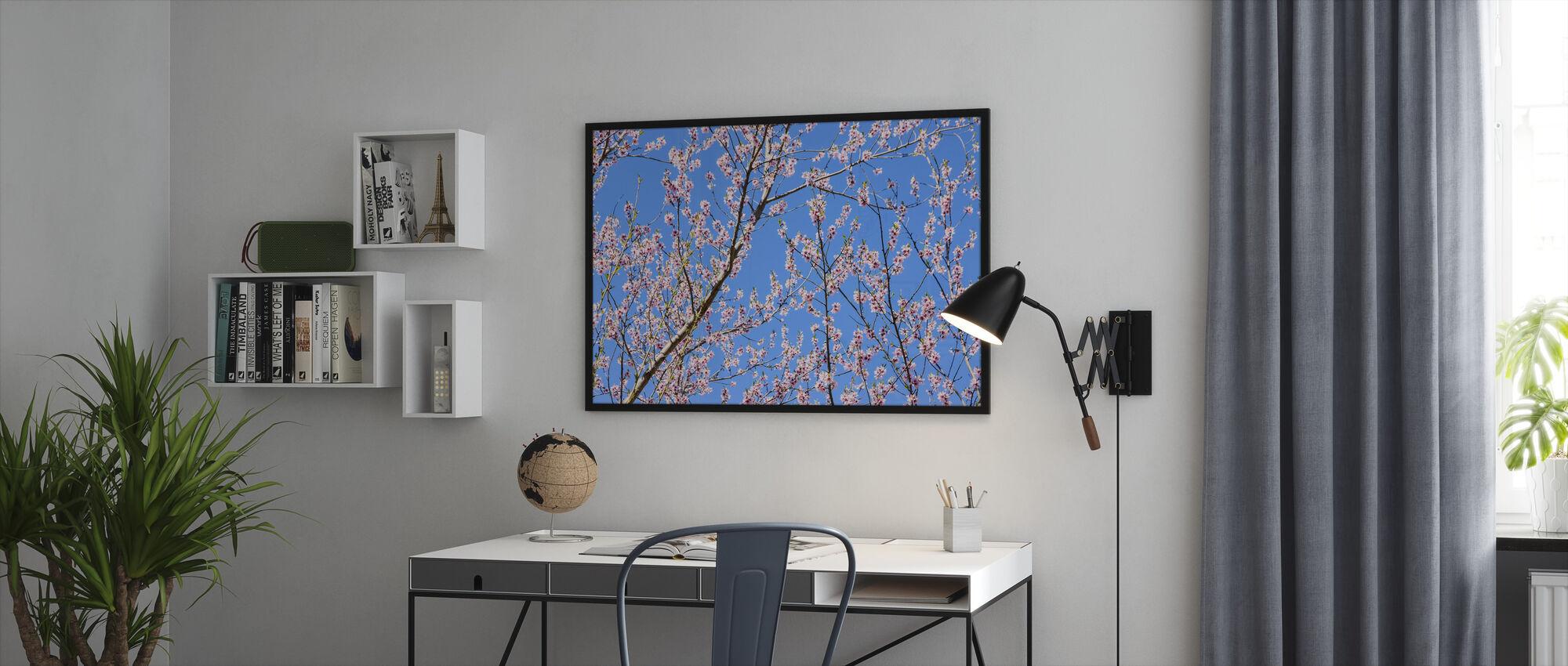 Kirsebær Blossom Grener - Innrammet bilde - Kontor