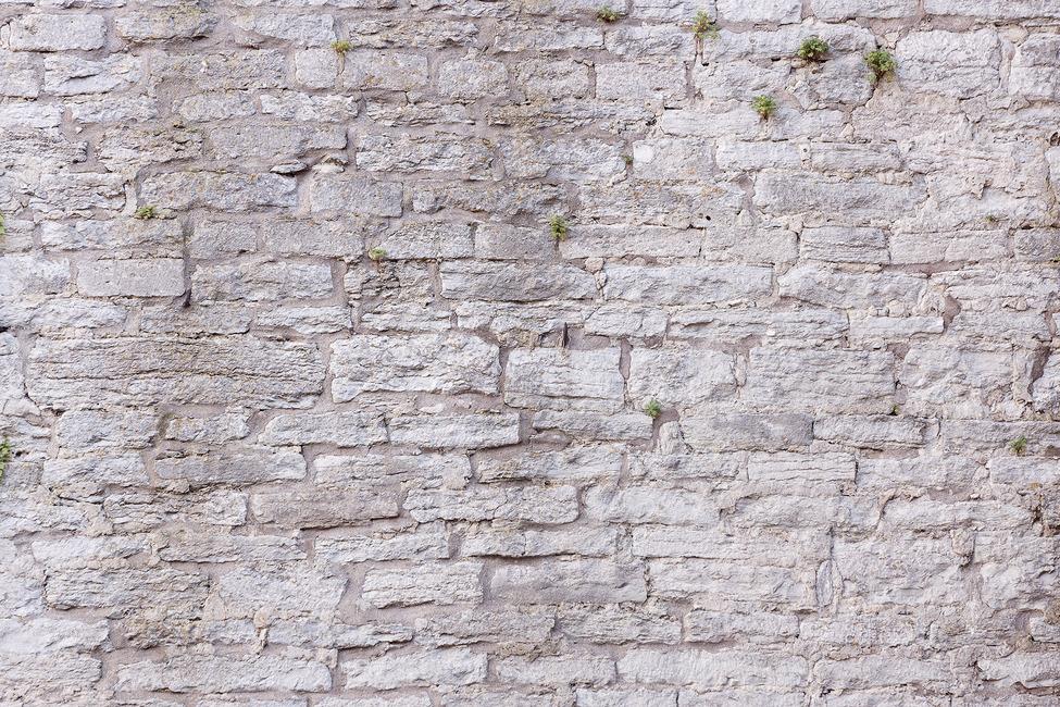 Ruin Wall Fototapeter & Tapeter 100 x 100 cm