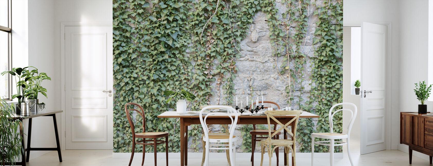 Muro de hiedra - Papel pintado - Cocina