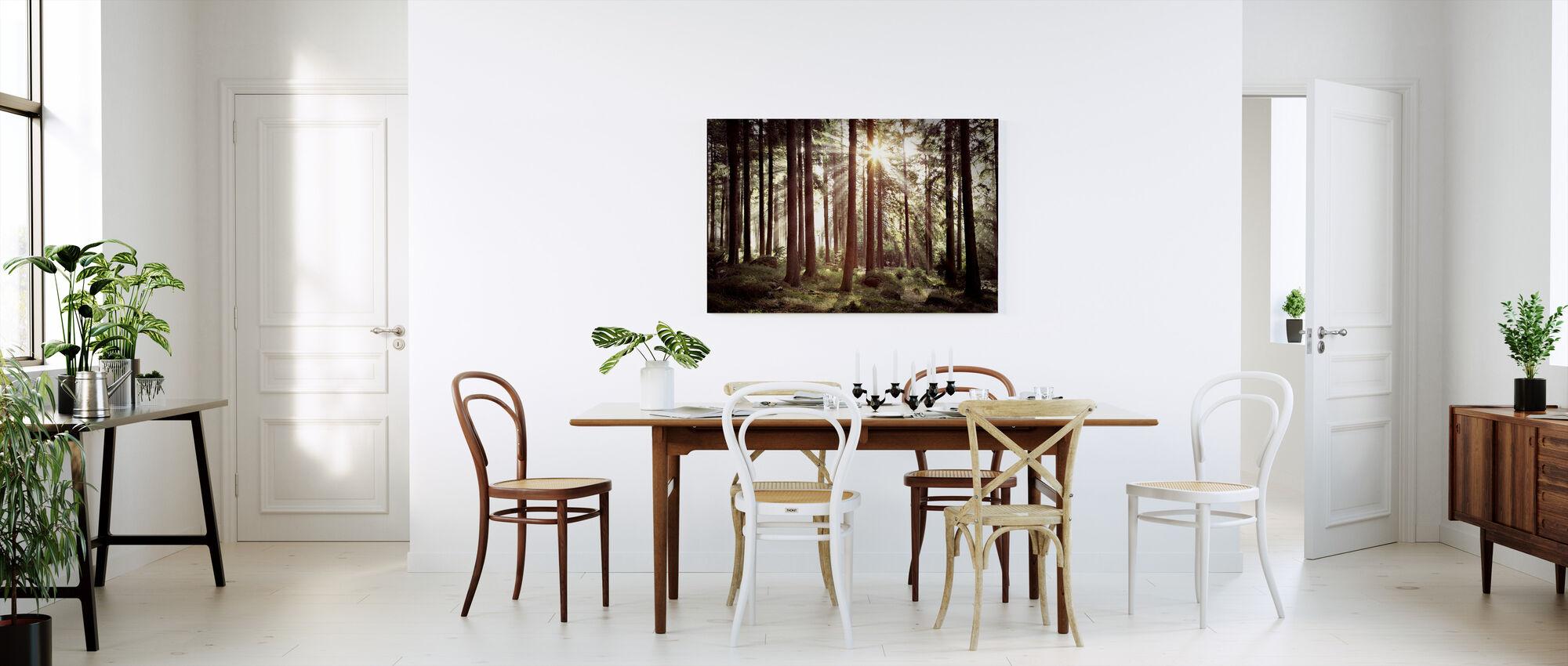 Solstråle genom träd - Retro - Canvastavla - Kök