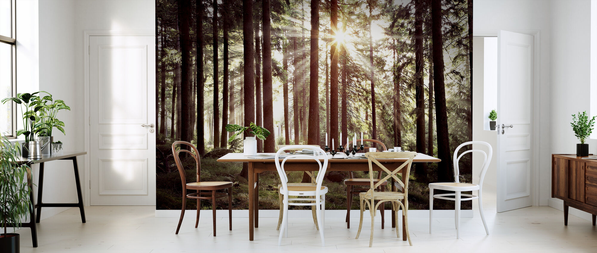 Sunbeam Through Trees - Retro - Wallpaper - Kitchen