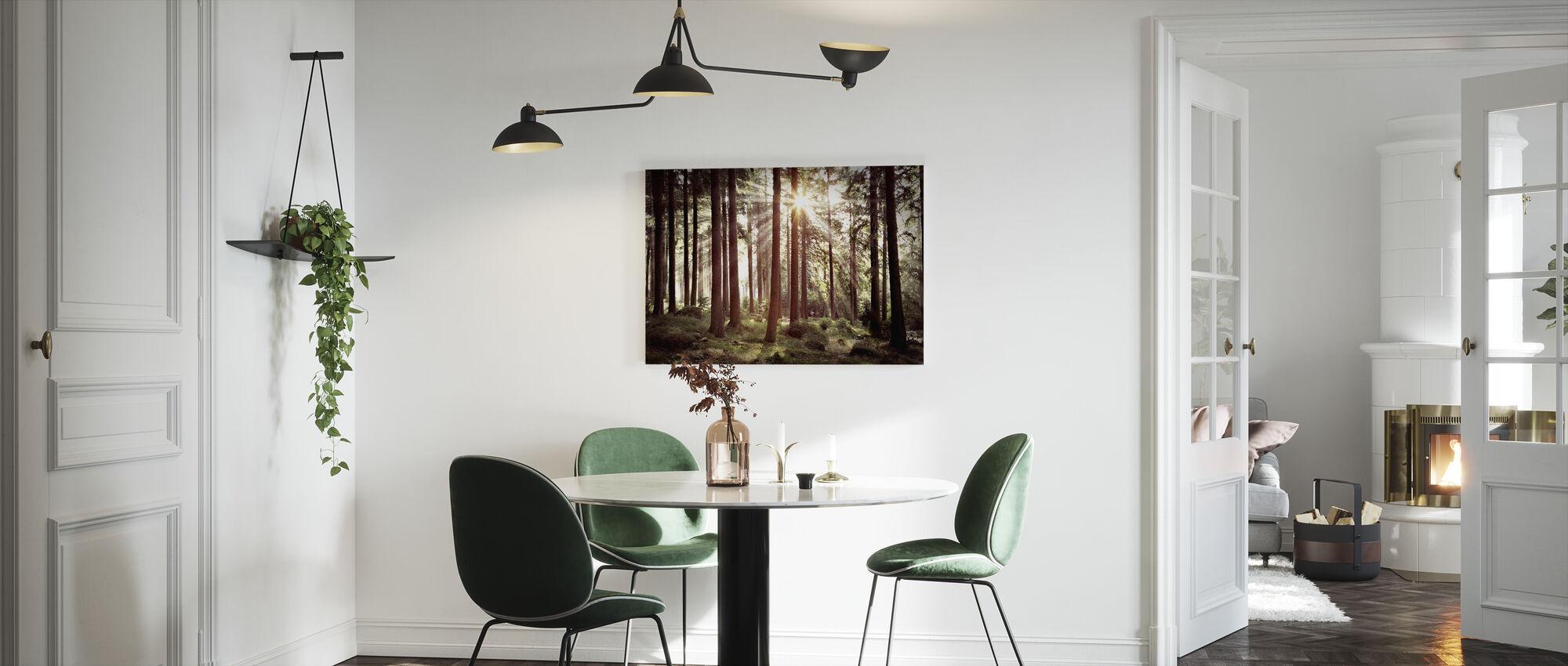Solstrålen gennem træer - Retro - Billede på lærred - Køkken