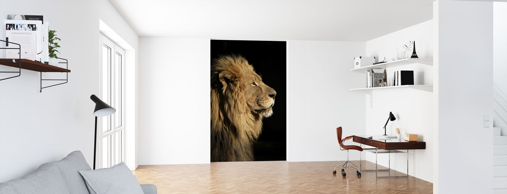 Big Male African Lion - Wallpaper - Office