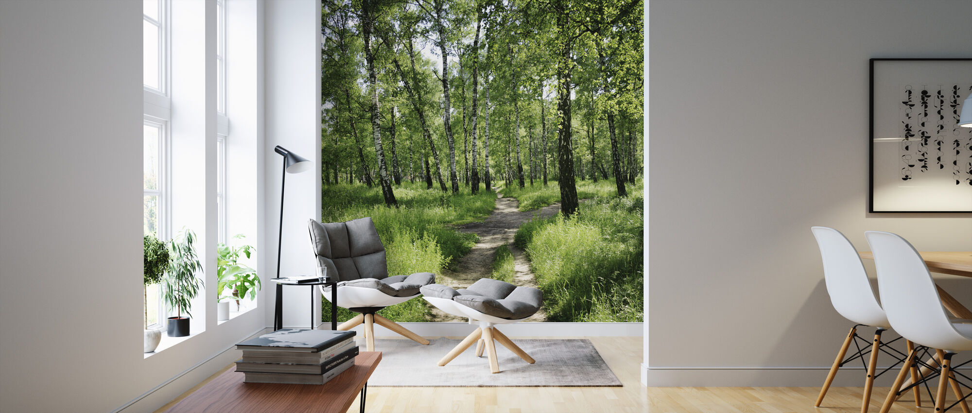 Birch Forest on Sunny day - Wallpaper - Living Room