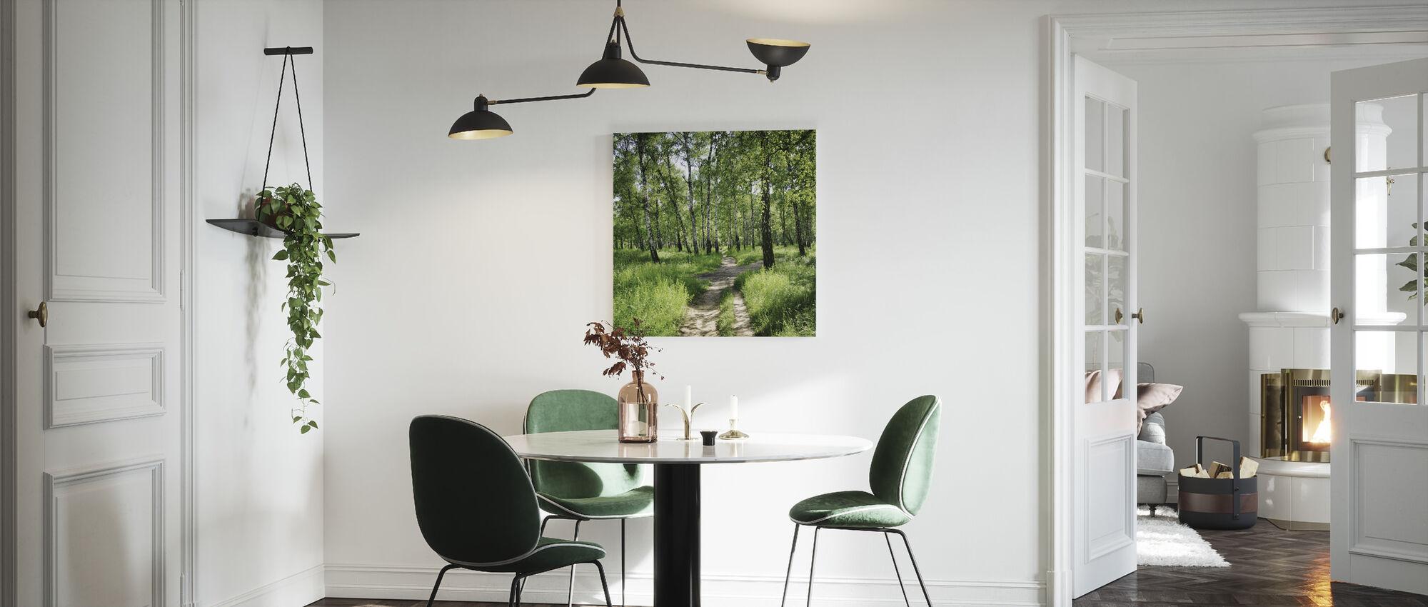 Brzozowy Las w słoneczny dzień - Obraz na płótnie - Kuchnia