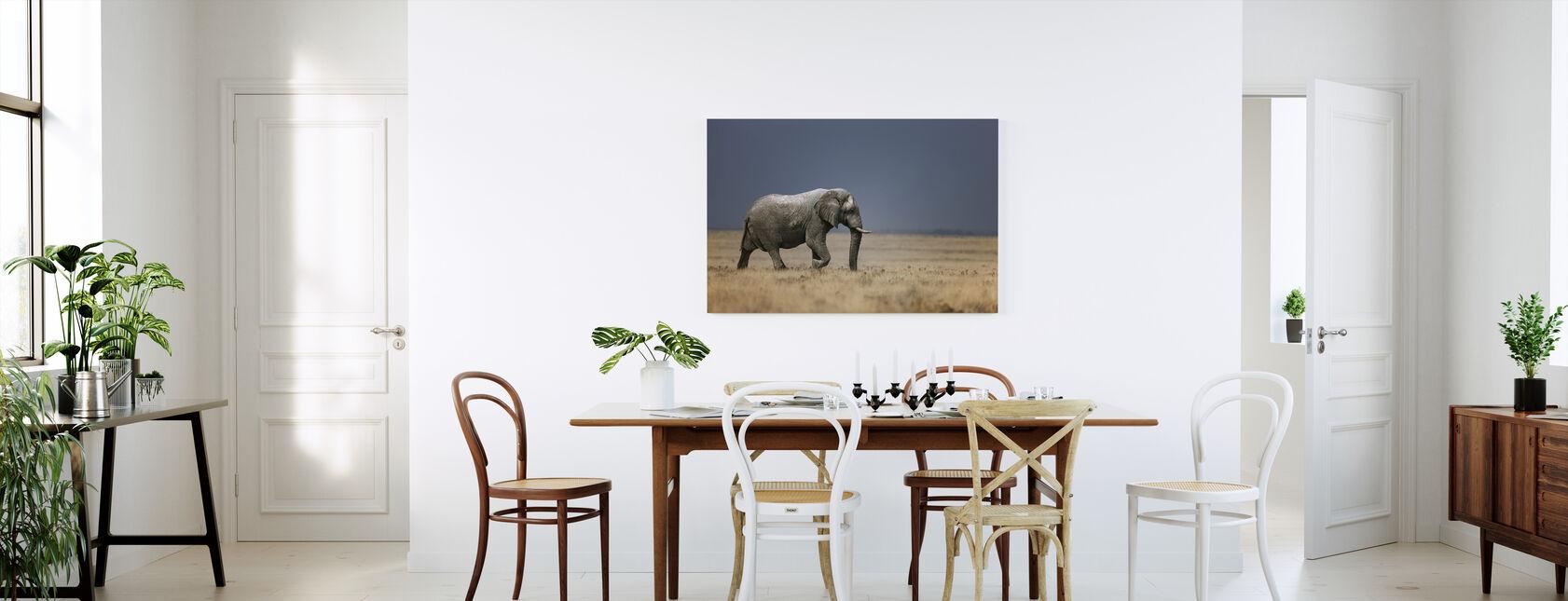 Olifant in grasveld - Canvas print - Keuken