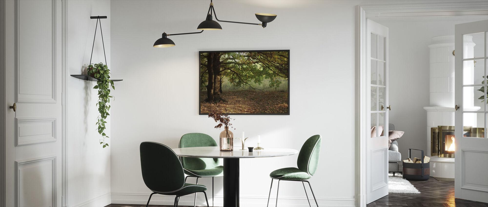 Evening Sun Beams on Autumn Leaves of Oak Tree - Framed print - Kitchen
