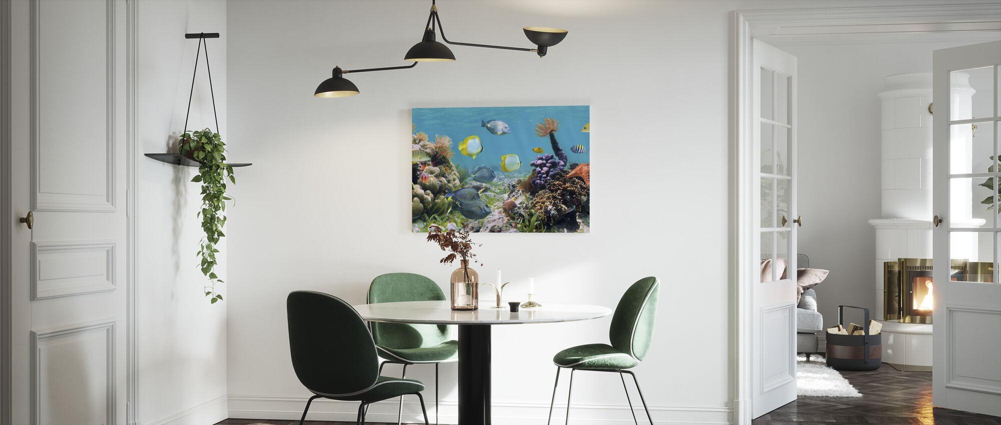 Panorama Korallrev - Lerretsbilde - Kjøkken