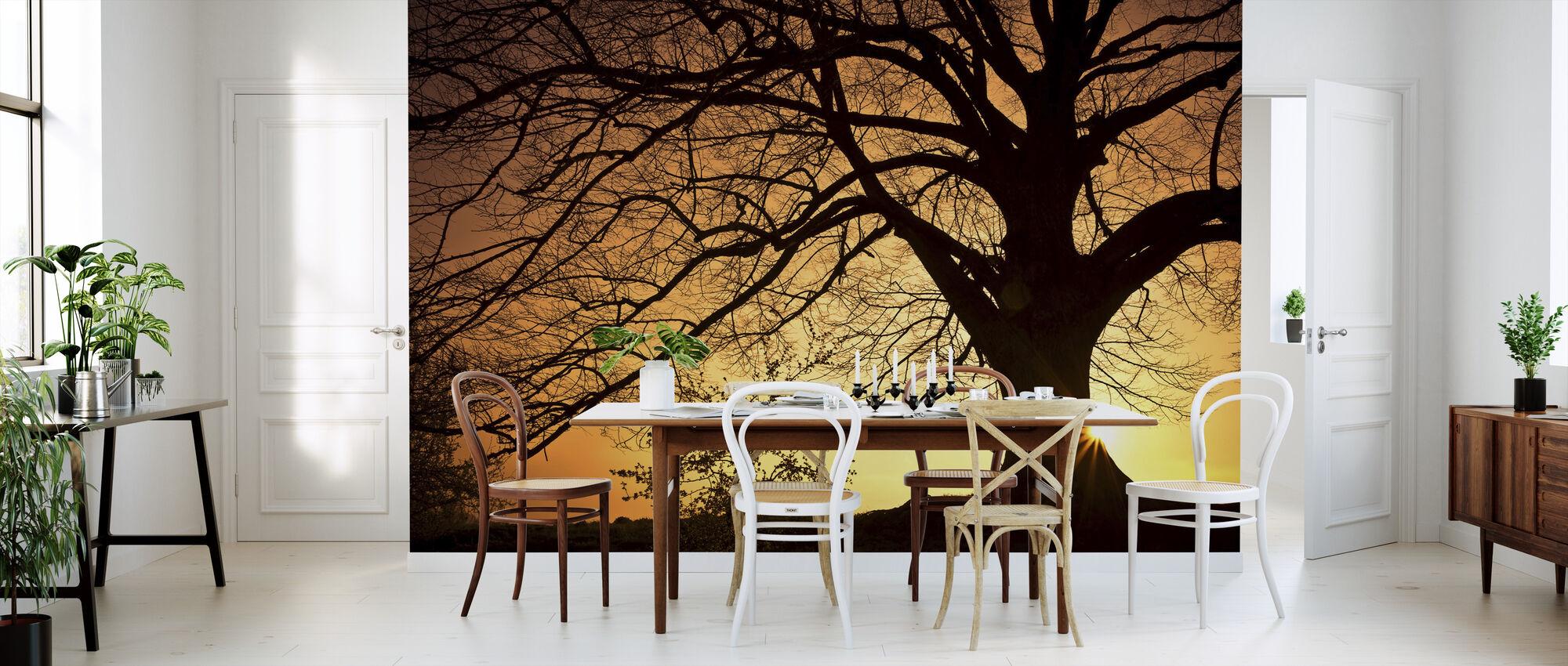 Silouette af et piletræ - Tapet - Køkken