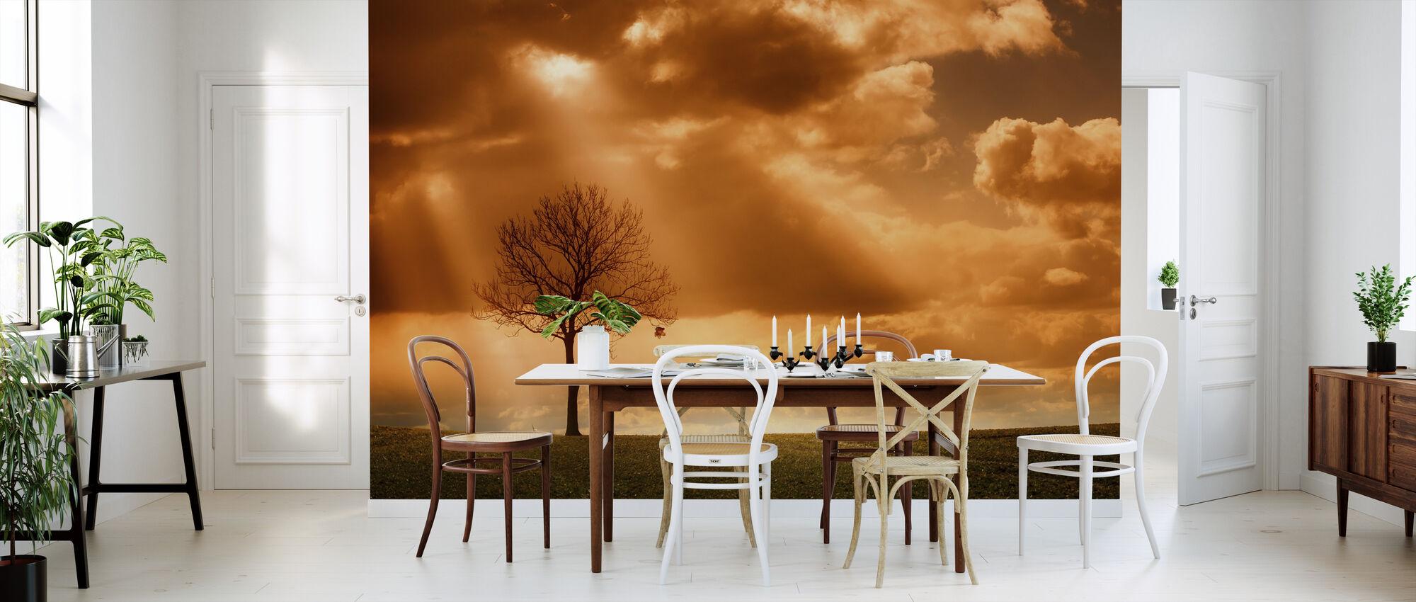 Oranje Boom in veld - Behang - Keuken