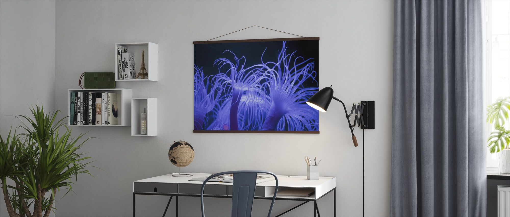 Sea anemone - Poster - Office