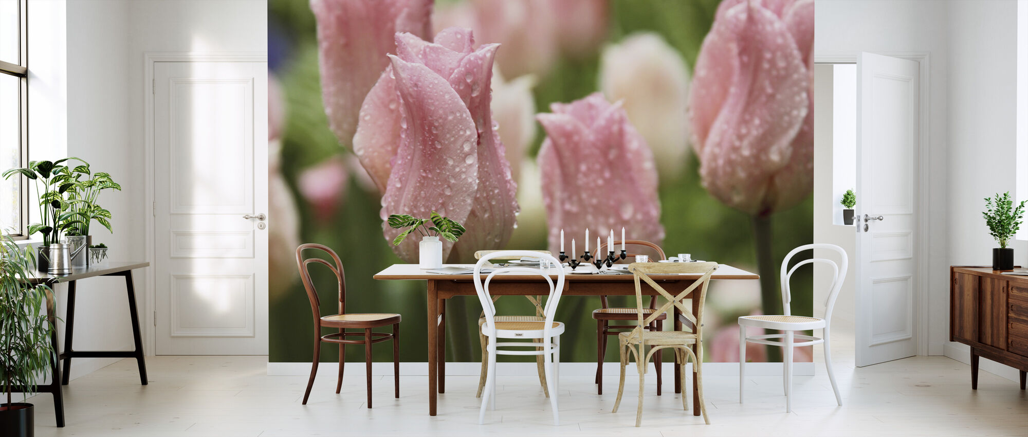 Tulips After Rain - Wallpaper - Kitchen