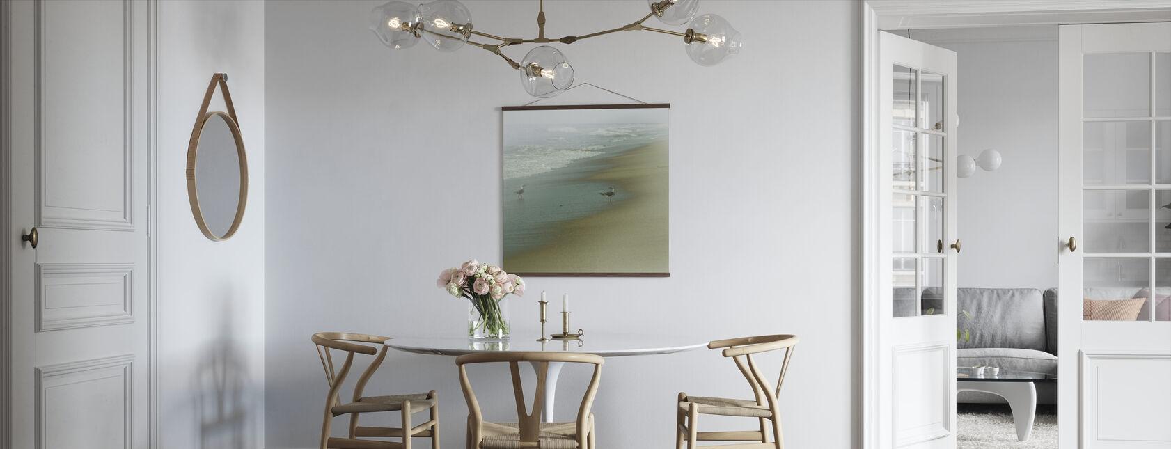 Seabirds - Poster - Kitchen