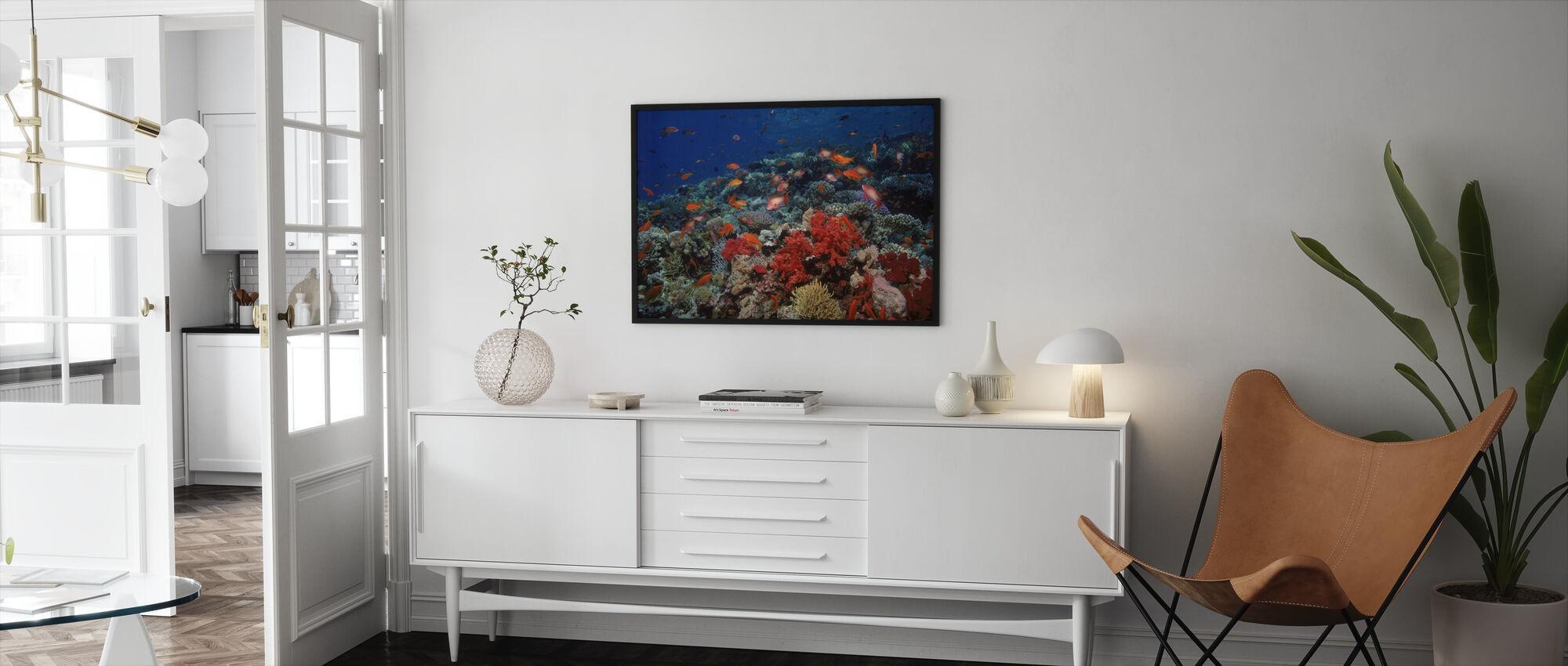 Röda Havet - Inramad tavla - Vardagsrum