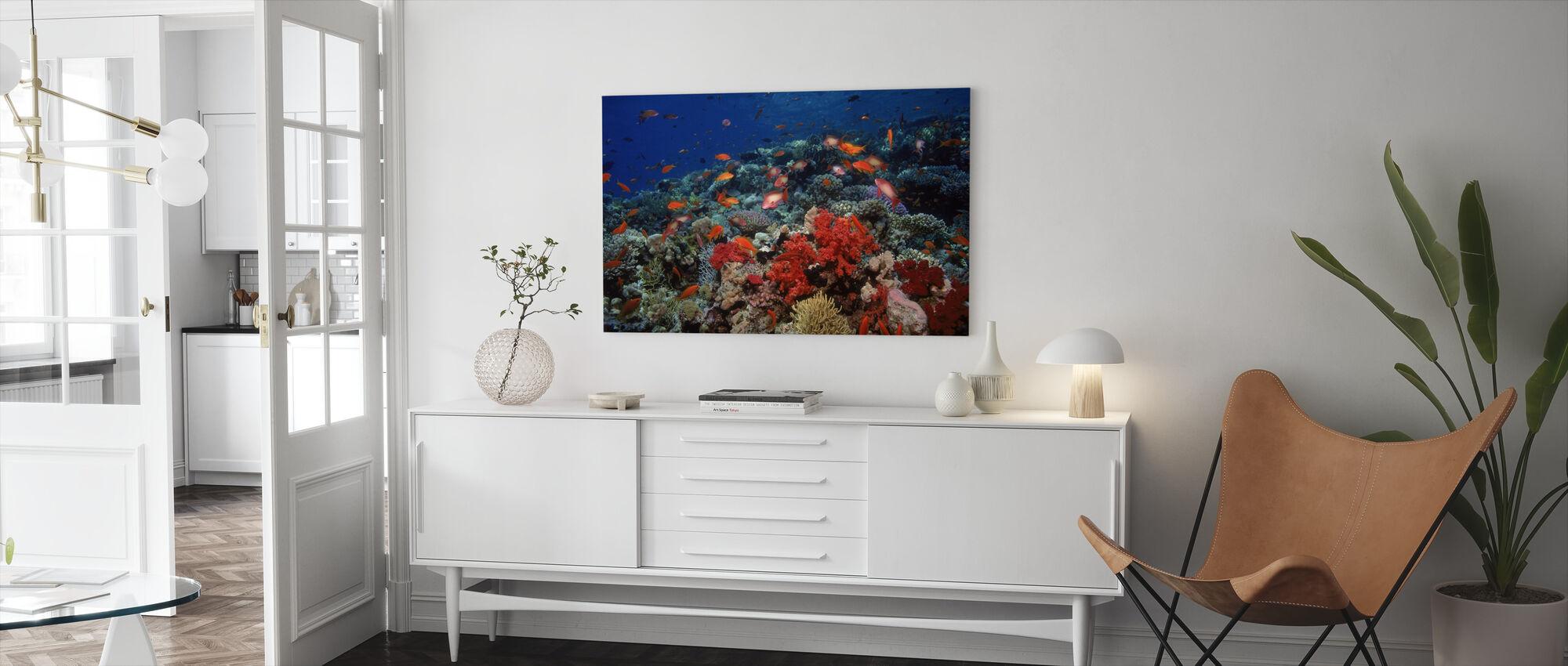 Rødehavet - Lerretsbilde - Stue