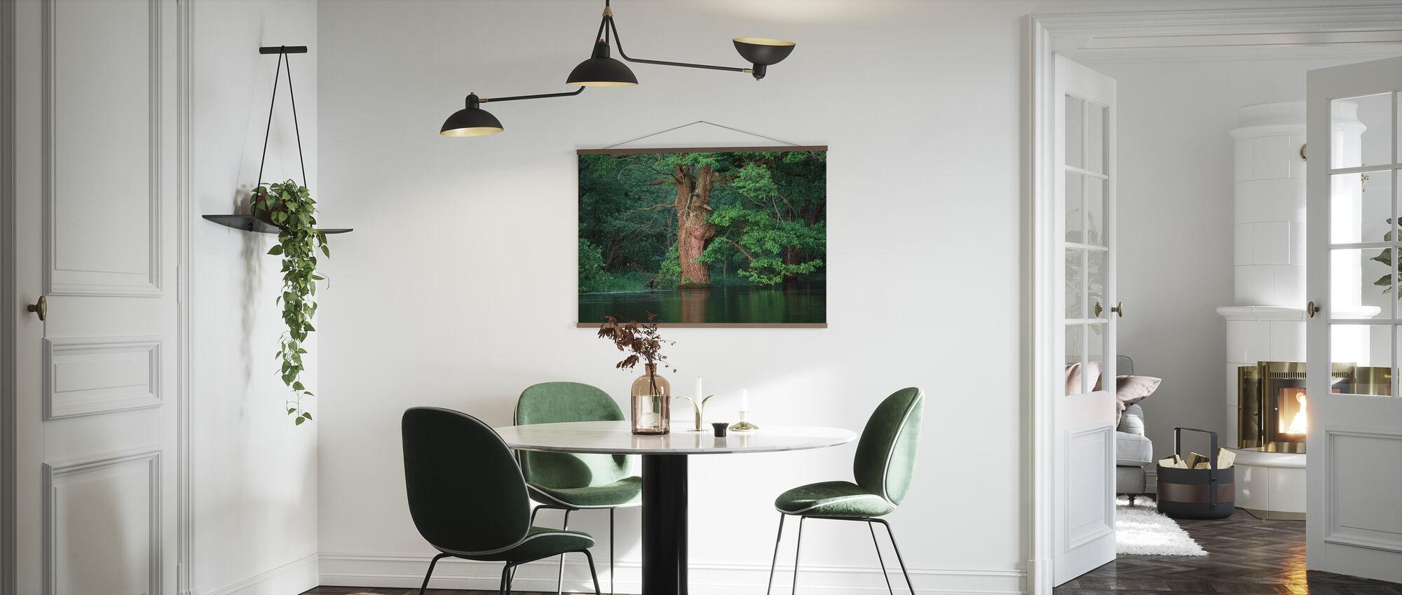 Oak Flooded by River - Poster - Kitchen