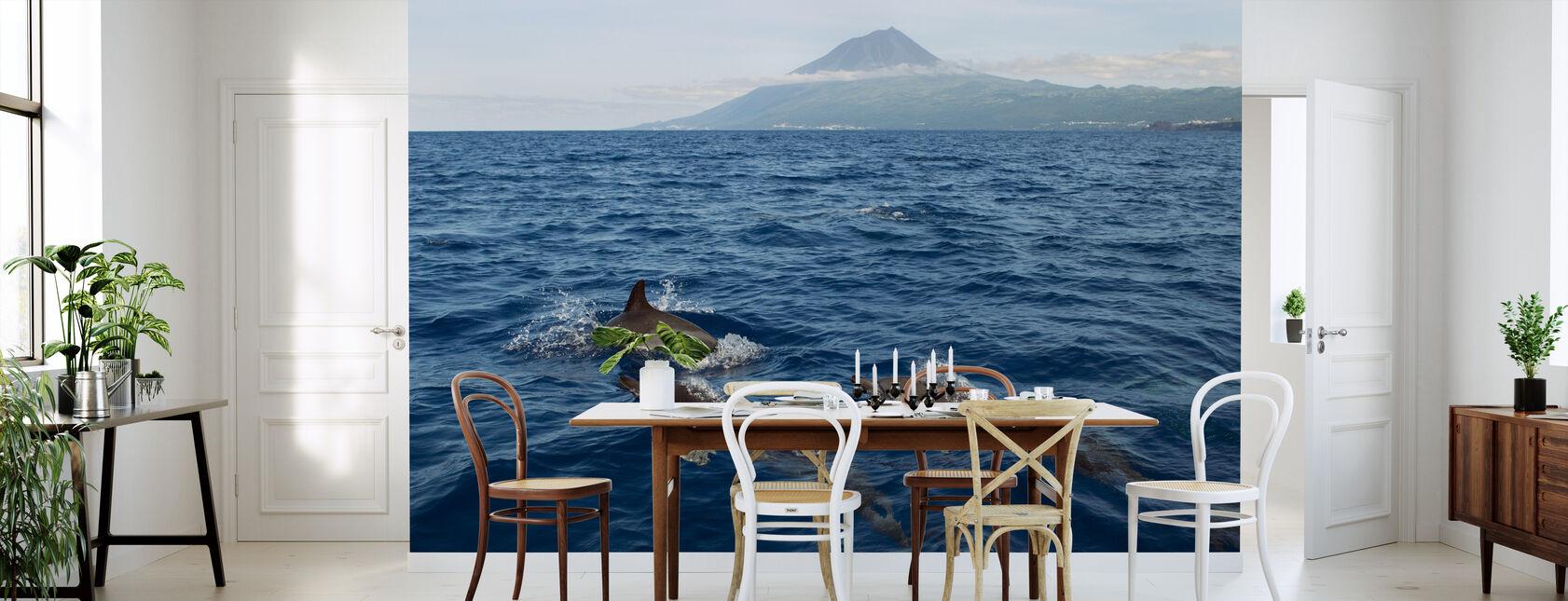 Delfine auf den Azoren - Tapete - Küchen