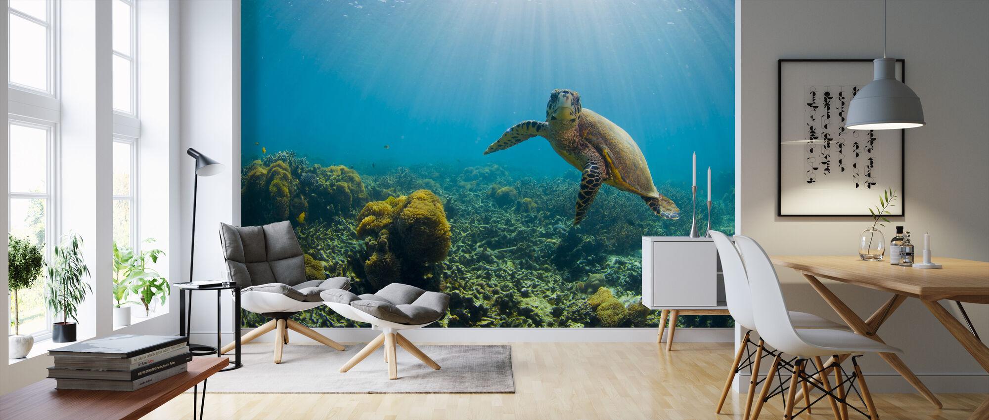 Viehättävä kilpikonna - Tapetti - Olohuone