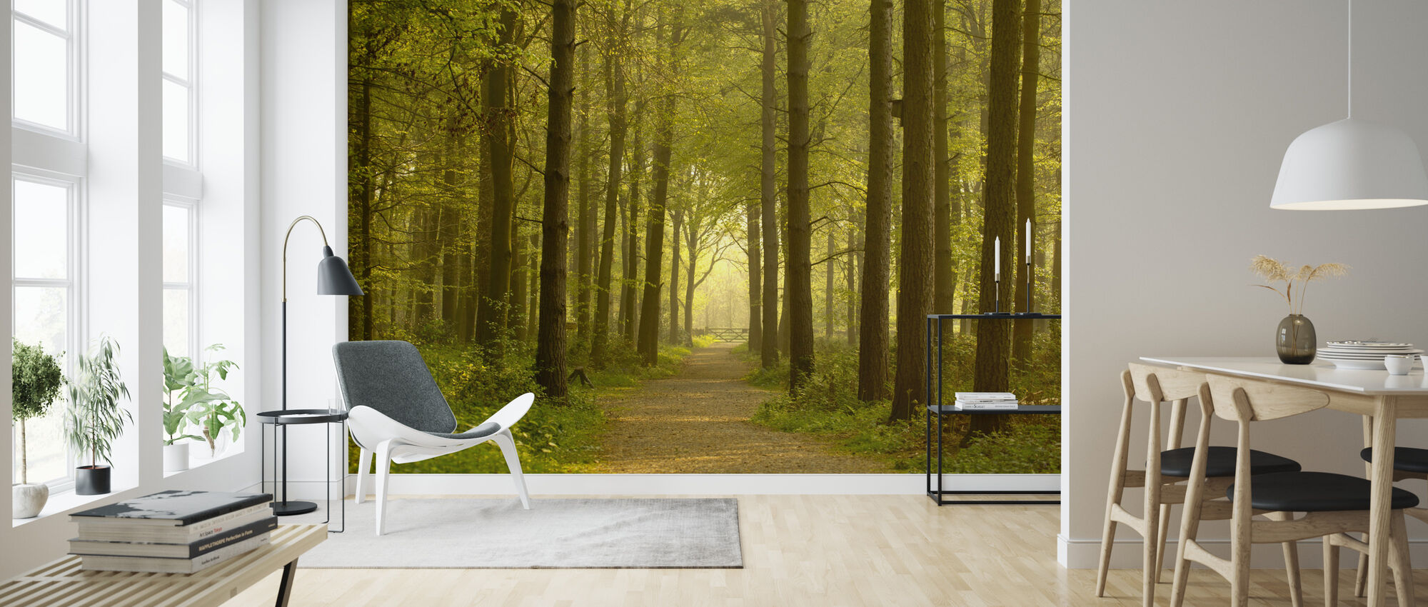 Path through Golden Forest - Wallpaper - Living Room