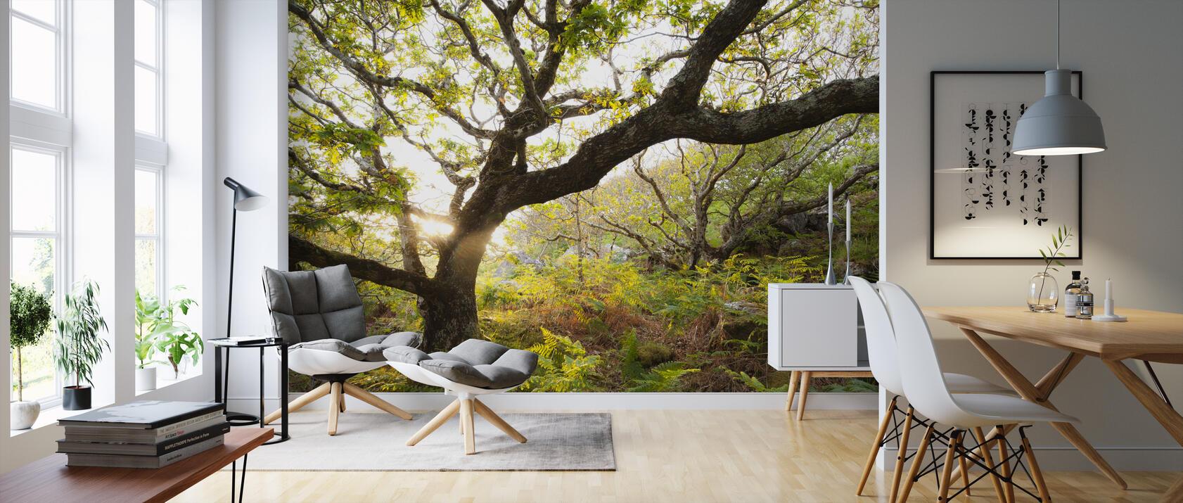 great oak tree fototapete nach ma photowall. Black Bedroom Furniture Sets. Home Design Ideas